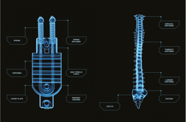 SPINE-technology-optical