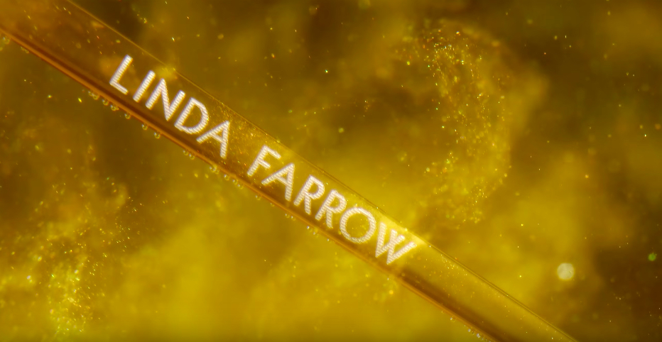 forever gold linda farrow luxury women 18k